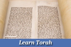 Learn Torah Online and In-Person