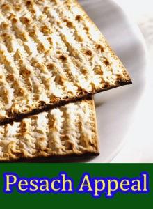 Pesach Appeal - Please Help