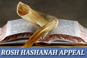 Rosh HaShanah Appeal - Please Help Us!