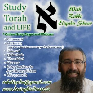 Study Torah with Rabbi Eliyahu Shear