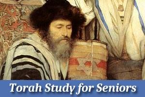 Torah Study for Seniors Online