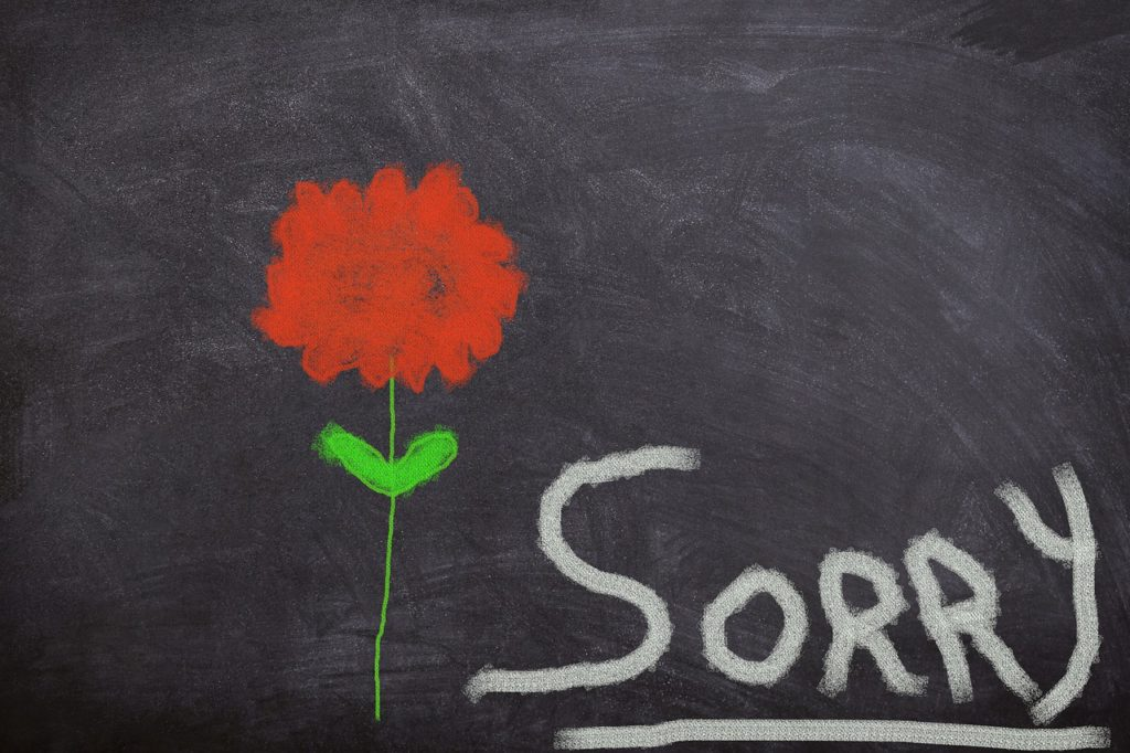 Sorry Sign with Rose
