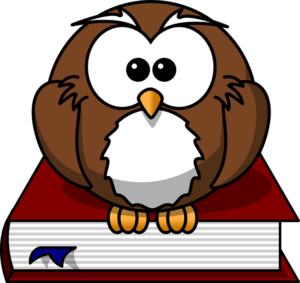Owl - Teacher
