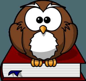 Owl - Teacher