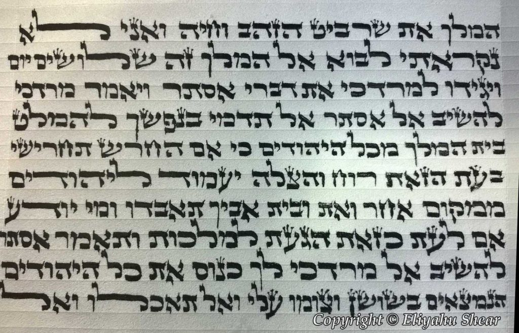 Part of Megillah - Practice work - Eliyahu Shear - My Journey to Become a Sofer Part 5!